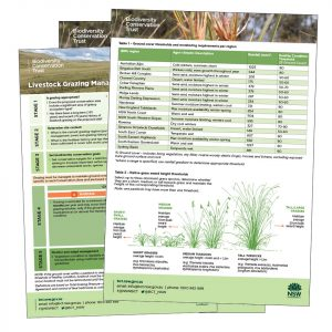 Infographic and multi-page flyer for BCT on Grassland management