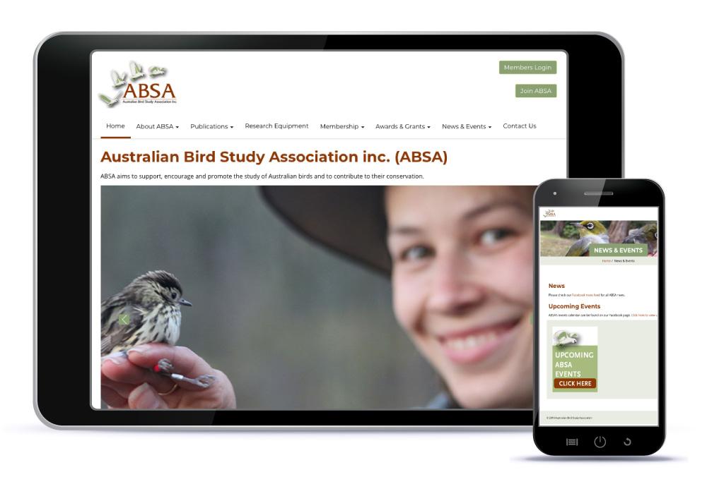 Bettina Kaiser Website Design ABSA