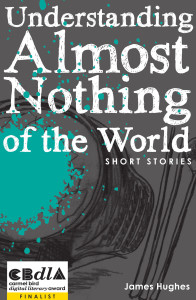 Bettina Kaiser Bookcover Understanding Almost Nothing of the World
