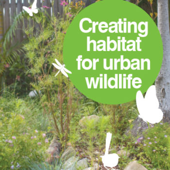 City of Sydney Habitat Creation Guide